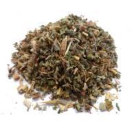 Agrimonia/ Eupatoria - Planta