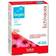 Gargola Echinacea (Equinacea) 45 Cap - Sakai