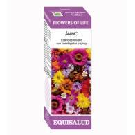 Flowers Of Life Ánimo 15ml - Equisalud