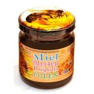 Miel con Propolis 250 gr - Apinatura